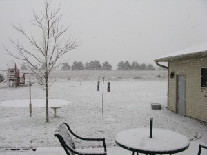 View from my patio door yesterday. I long to sit out on that chair and write in the warm summer sun. C'mon Mother Nature!