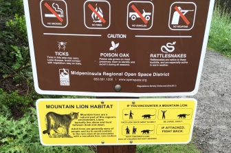 mountainlionwarning