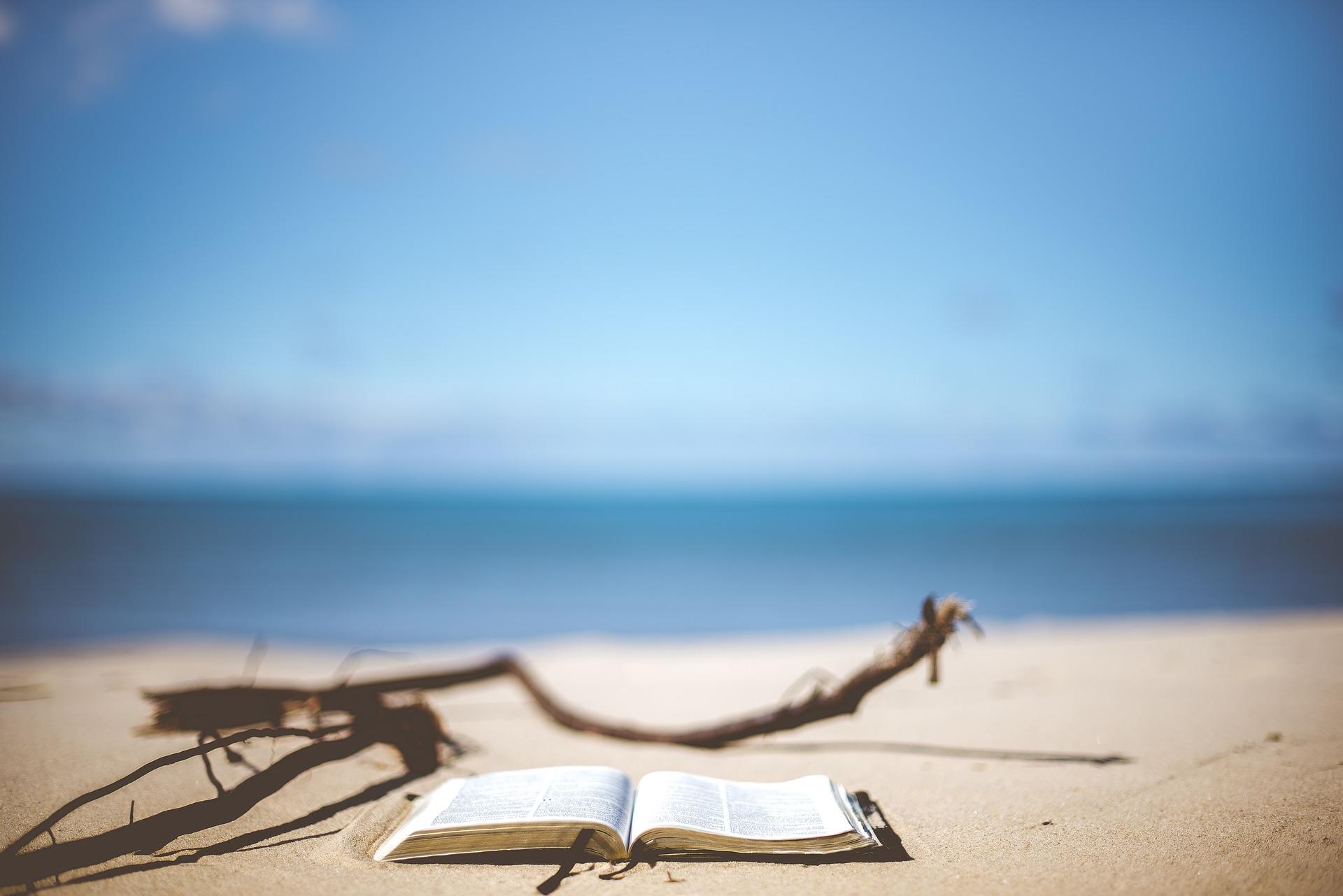 beach-1866992_1920